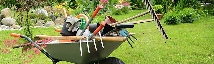 Gartenpflege  Gartenpflege - Blumen de Clercq Aachen